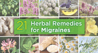herbal remedies for migraines