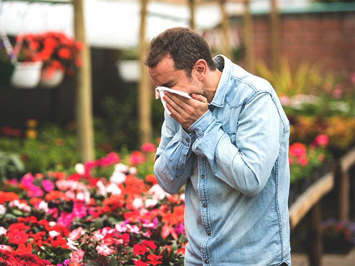 Effects of sex on hay fever