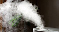 Humidifiers for Allergies