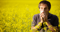 A man sneezes in a field