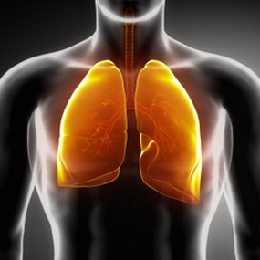 http://www.healthline.com/hlcmsresource/images/topic_centers/copd/article-images/6_Signs_of_COPD_Slide_1.jpg
