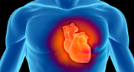 Heart Disease Overview