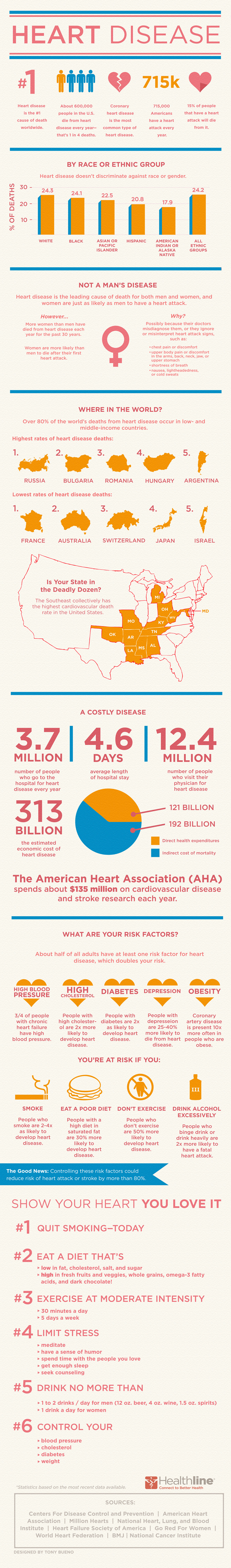 Heart Infographic