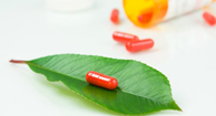 herbal leaf and supplement pills