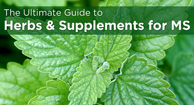 herb and supplement guide