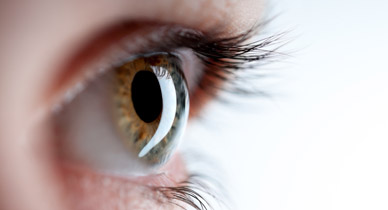 coping with multiple sclerosis vision disturbances, Skeleton