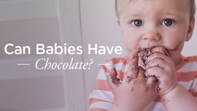 Can Babies Have Chocolate?
