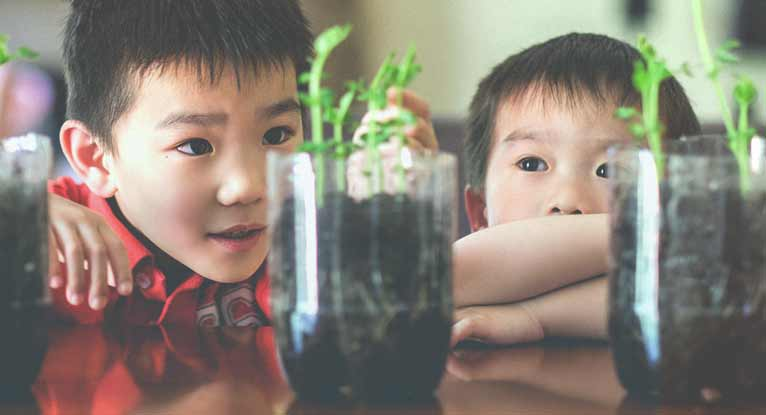 5 DIY Science Projects You Can Do with Your Kids
