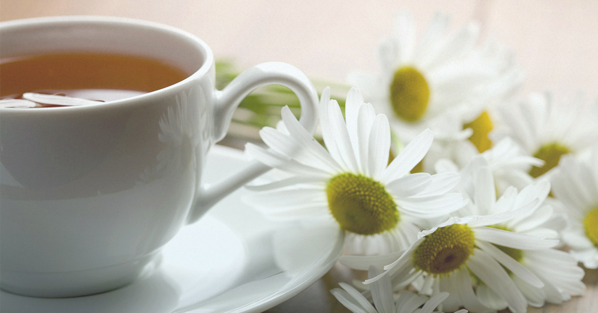 Chamomile and to avoid during pregnancy