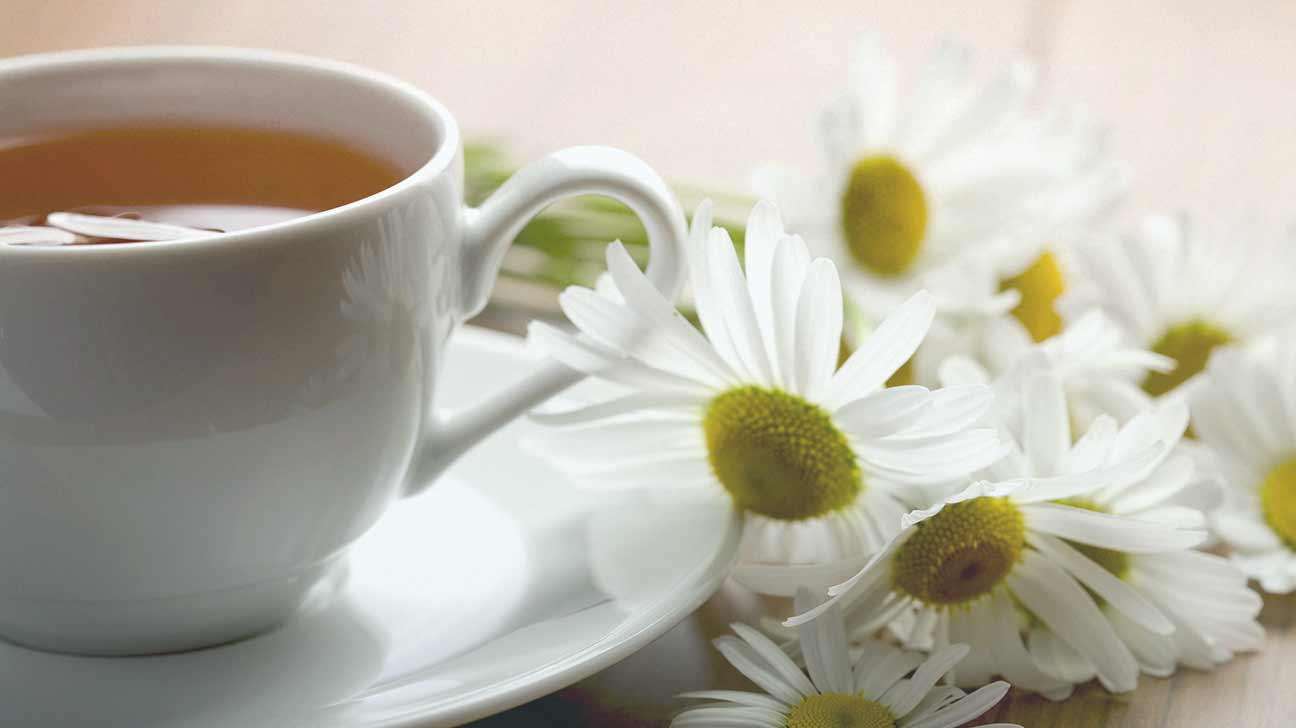 Chamomile Pregnancy: tips, recipes, contraindications