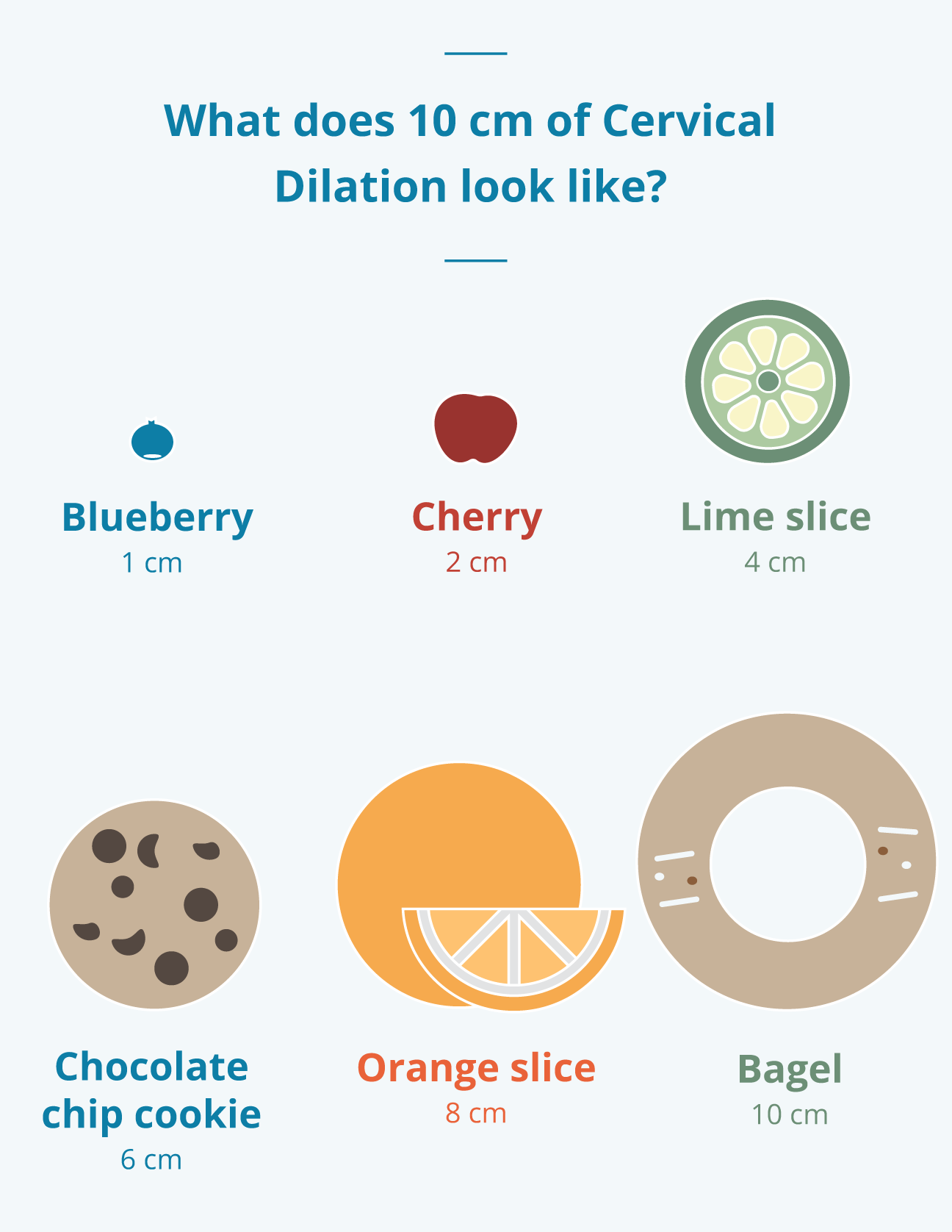 Cervix dilation infographic