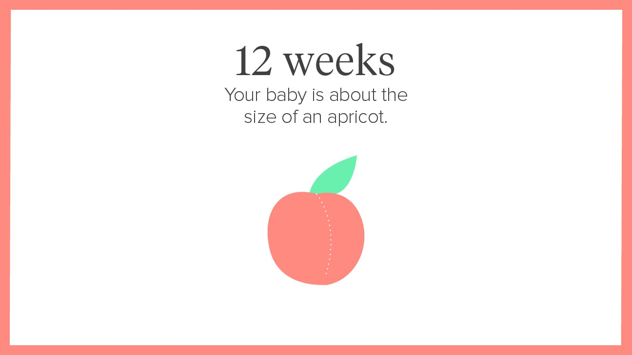 Pregnant Week Calculator 18
