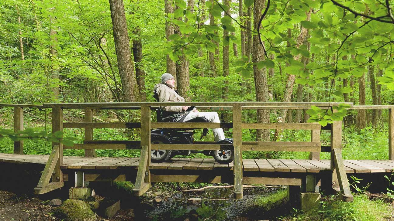 wheelchair friendly activities