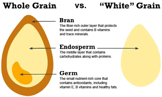 is rice fattening or weight loss friendly? label wheat diagram