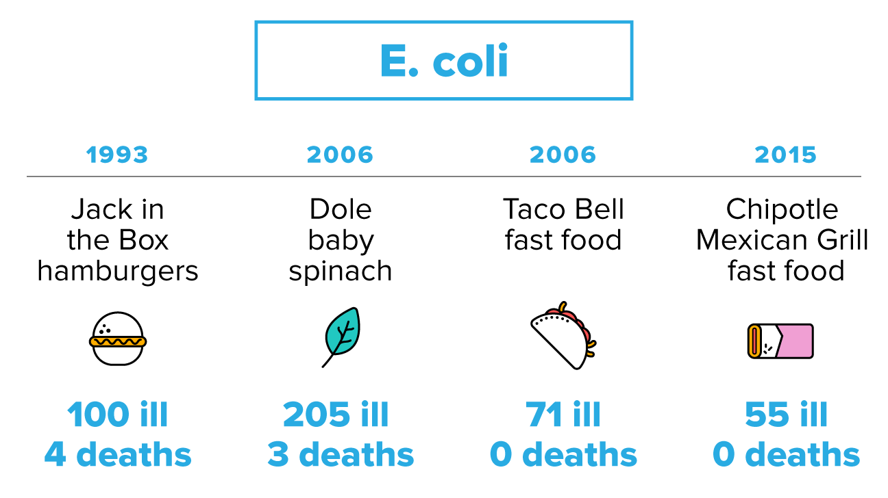 E. Coli Bacteria Normally Lives In The Intestines Of Animals And Humans.  However, Infections From Certain Strains Of This Bacteria Can Sicken Humans.  Food Poisoning Duration